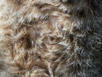 faux fur gilet