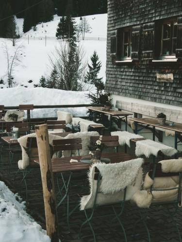 fur and snow
